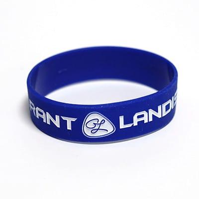 Wristband 1