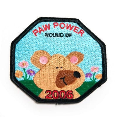 Scout Patches 2